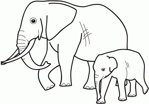 Pin By Malai Silarat On Pony Elephant Coloring Page Zoo Coloring Pages Animal Coloring Books