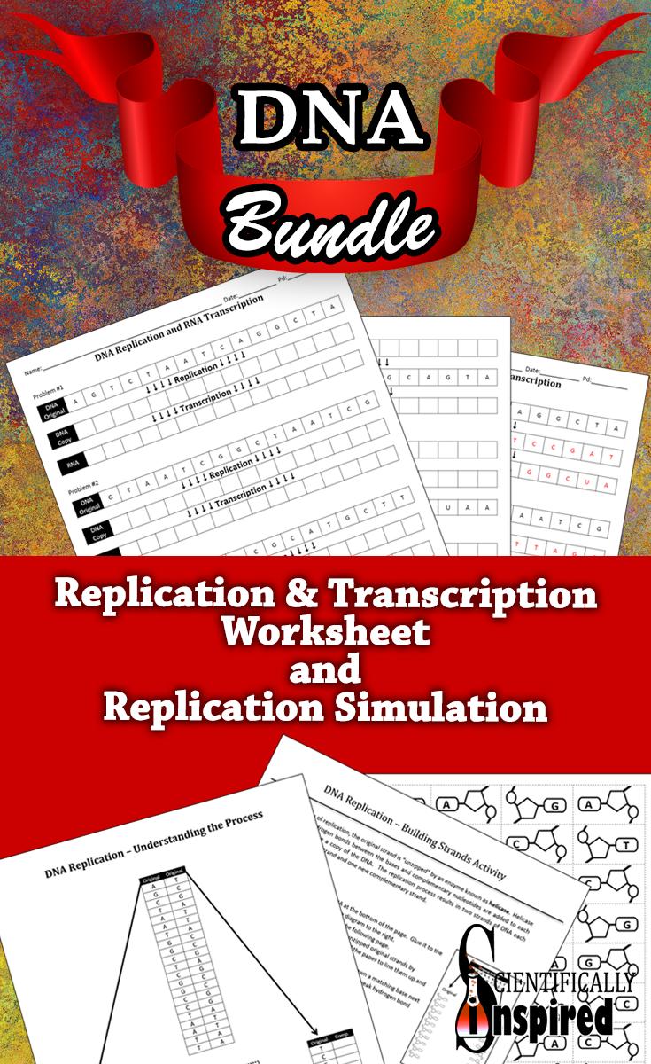 Bundle Dna Replication And Transcription Worksheet W Replication Simulation Interactive Lessons Biology Lessons Transcription [ 1200 x 735 Pixel ]