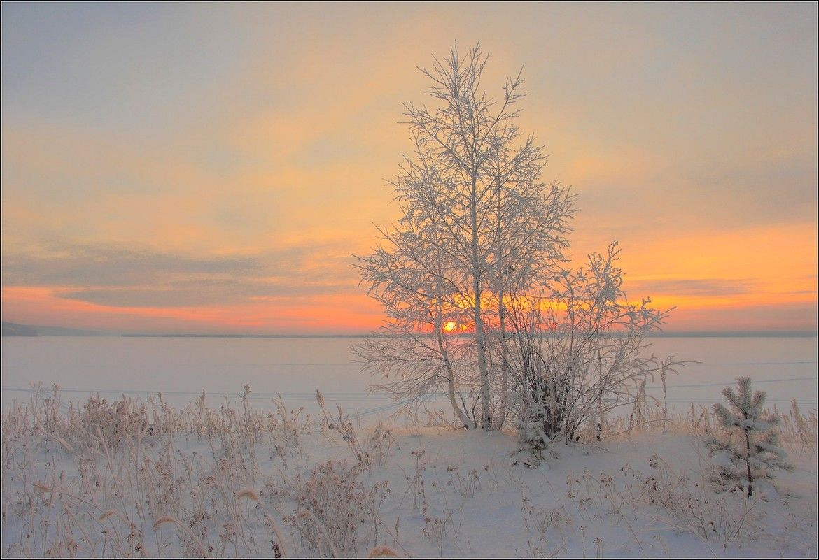 Winter sunrise in gentle tones