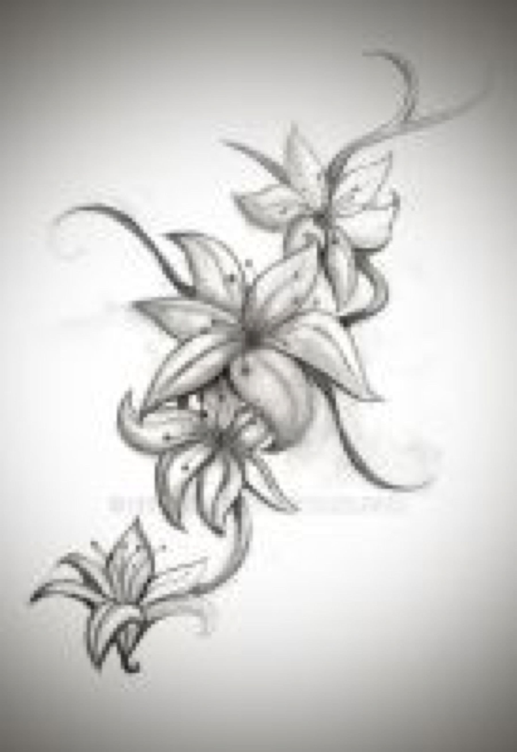 Pin by love tats on drawings flash for tattoos pinterest lily lily tattoos i would loveee this in bright colors izmirmasajfo