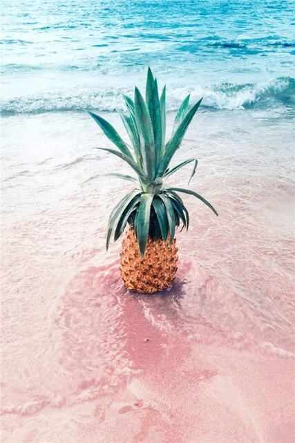Canvas Painting Pink Seascape Pineapple Nordic Poster Print Wall Picture Canvas Painting Scenery Life Living Room Home Decor - 50x70cm no frame / D