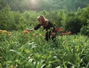 Specialty Garden Center: Wilkerson Mill Gardens   Atlanta Magazine