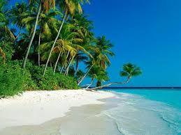 spiaggia - Cerca con Google