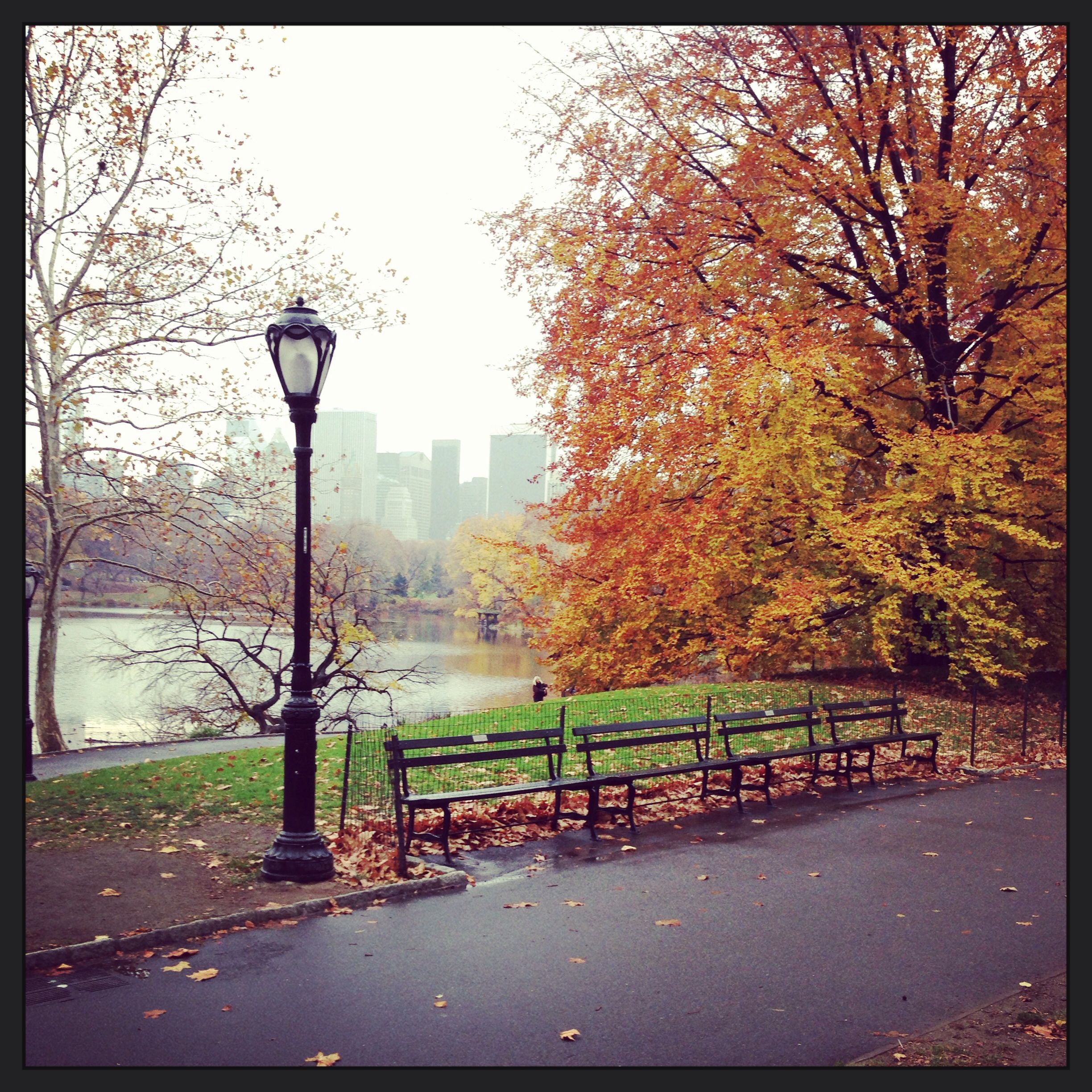Central Park today.