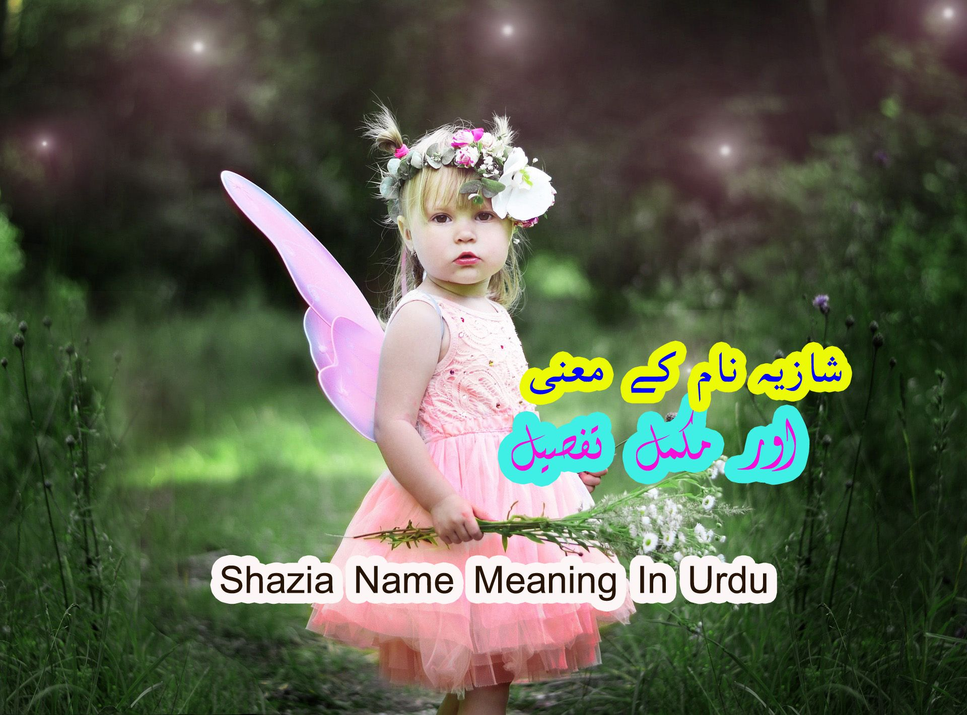 Shazia Name Meaning In English    Islamic Names For Girls   Names ...