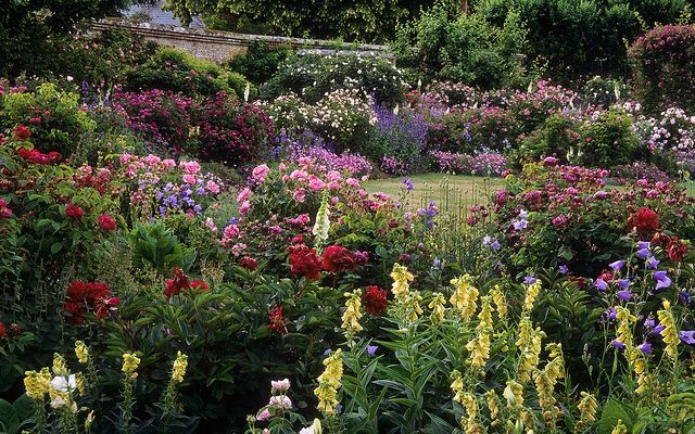 Mottisfont Abbey Rose Gardens Hampshire Uk Beautiful Gardens