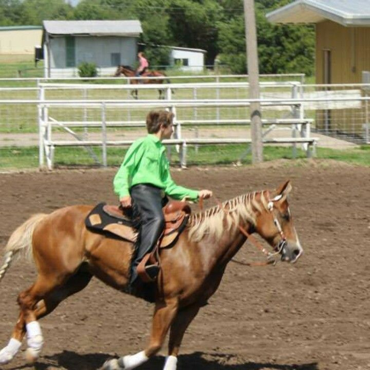 Reining class at county fair show 2014 - Champion!
