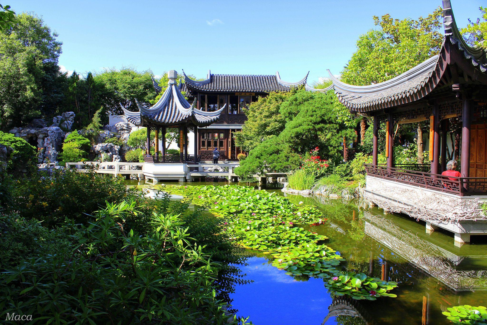 Httpsflickrpvkfzj3 - Lan Su Chinese Garden