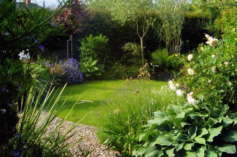 Suburban garden - Damian Costello Garden Design   Garden ...