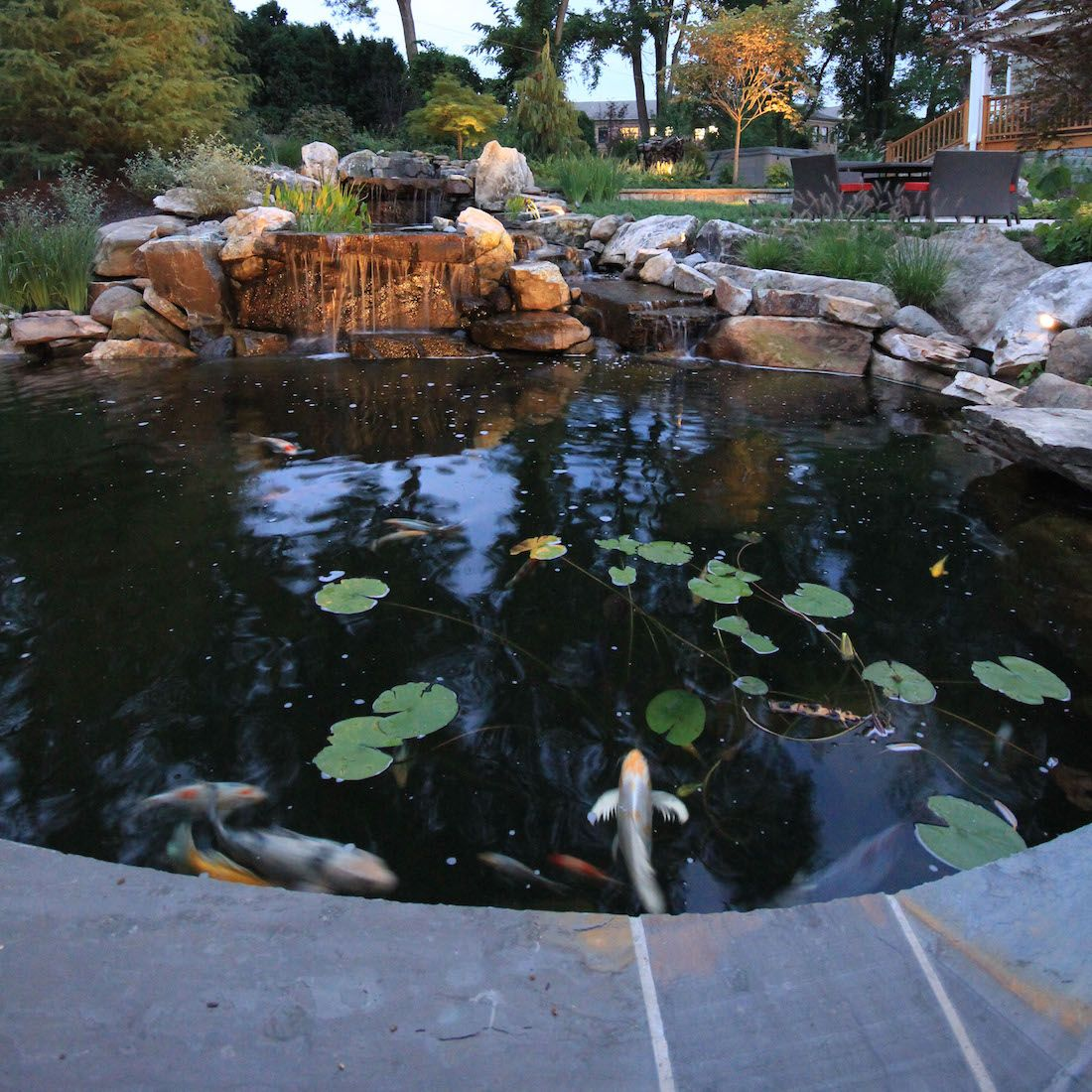 Koi Pond Design With Small Garden Fish Pond Designs With 400 x 300
