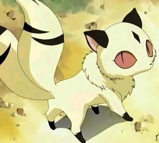 Cutest Anime Animal Anime Animals Anime Inuyasha
