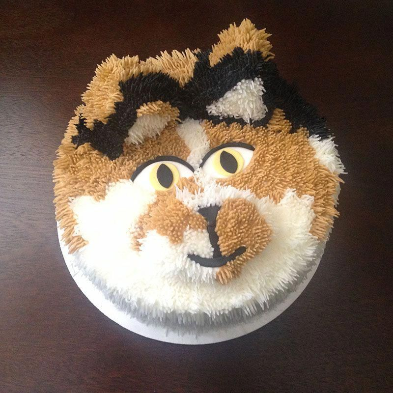 Can Cats Eat Peanut Butter WarriorCats Birthday cake