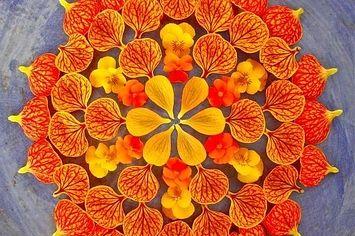Beautiful Flower Mandalas.