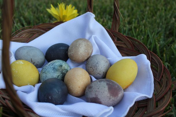 Easter Egg Dyeing the Natural Way