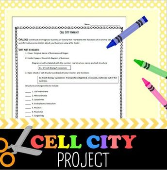 Cell City Analogy Project Assignment Sheet Cell Structure And