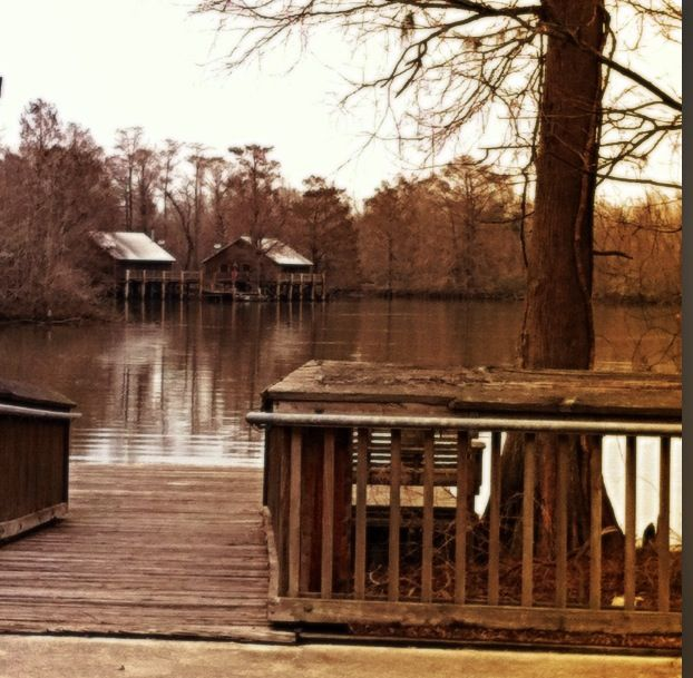 Cabins At Lake Fausse Pointe State Park L O U I S I A N A
