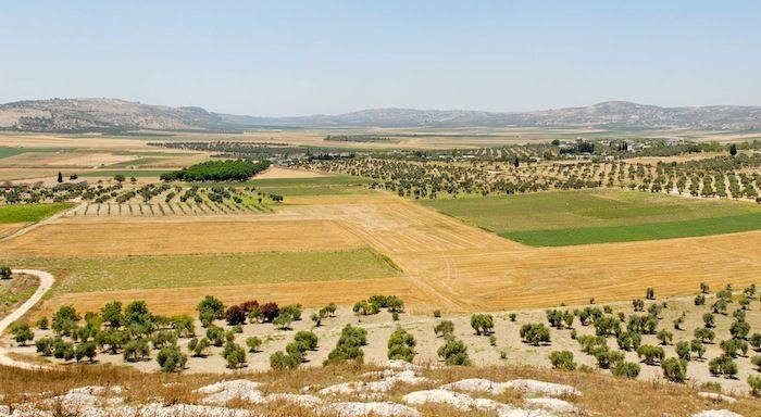 Mount Carmel Three Passes Along The International Highway Israel