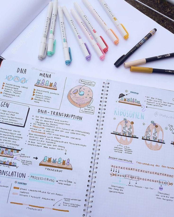 Inspiration studieren - #inspiration #studieren - #Juliet'sLerntipps #aestheticnotes