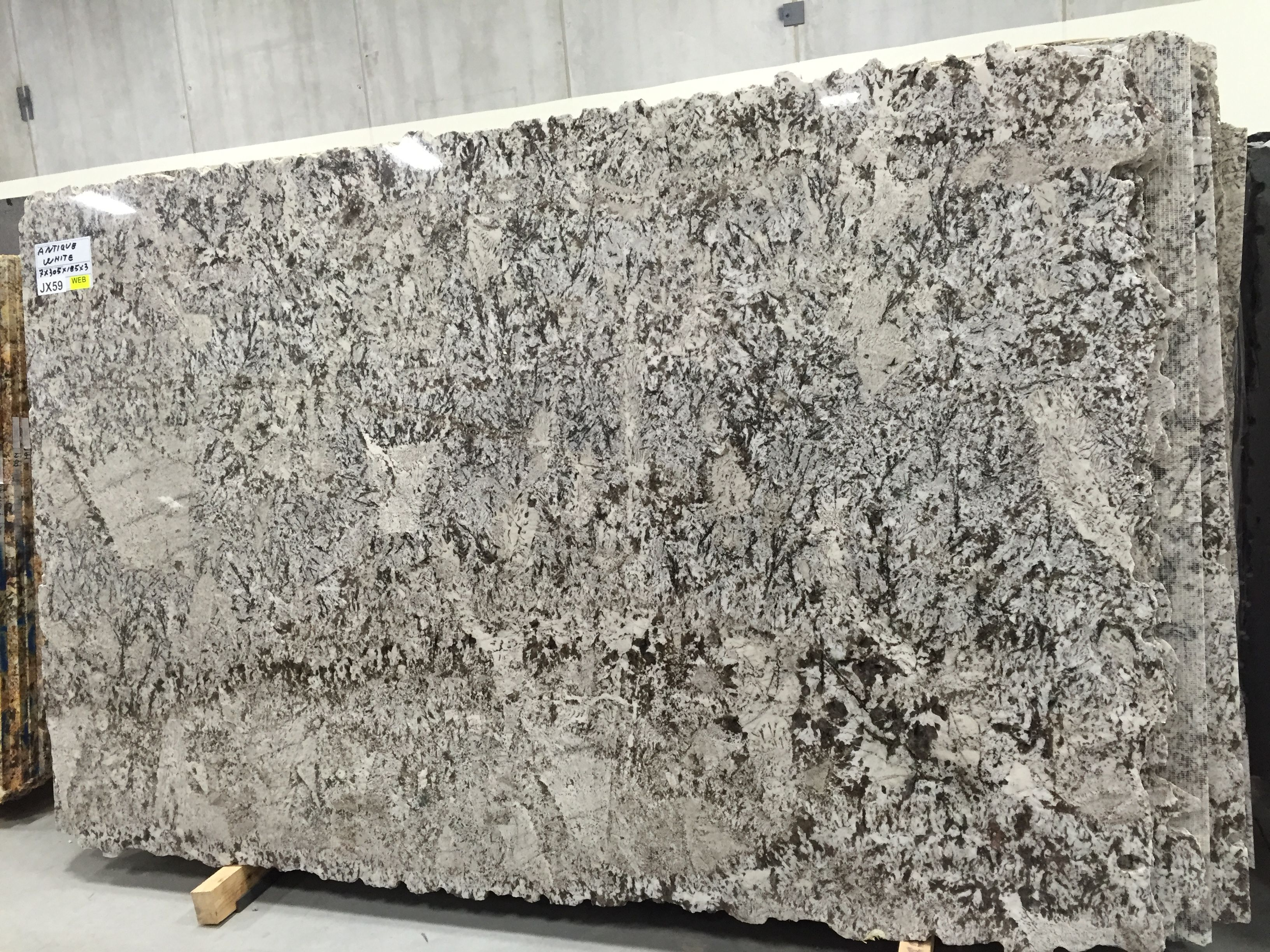 Bianco Antico Granite Countertops Granite Slab Countertops
