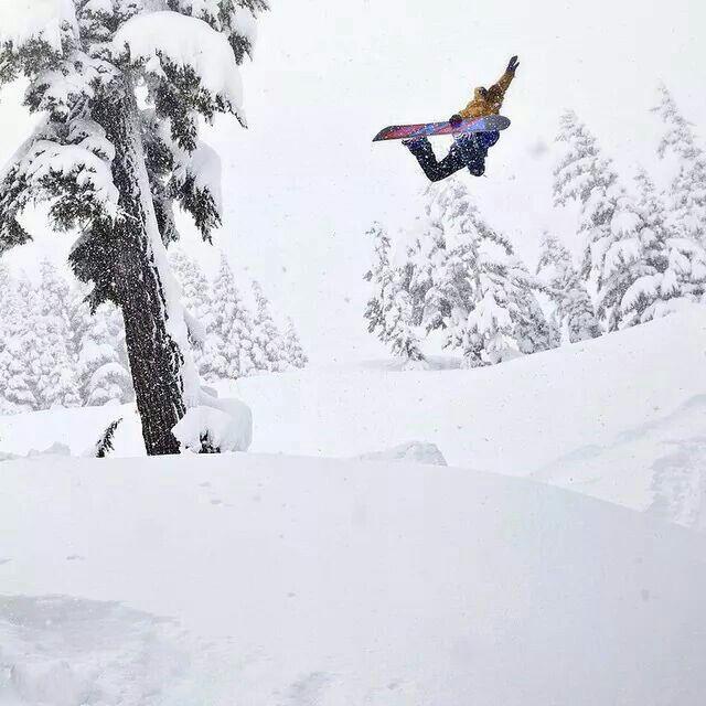 Shredding snow joy | Snowboarding | Pinterest | Powder ... Shredding Snow