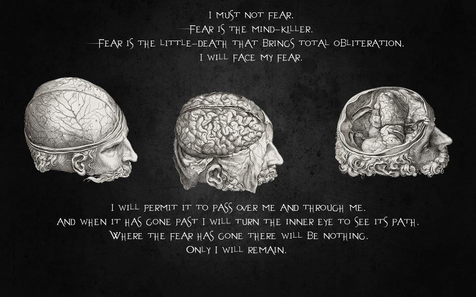 Famous Quotes About Fear Stephen Hawking Quotes Inspirational Quotes Famous Quotes .