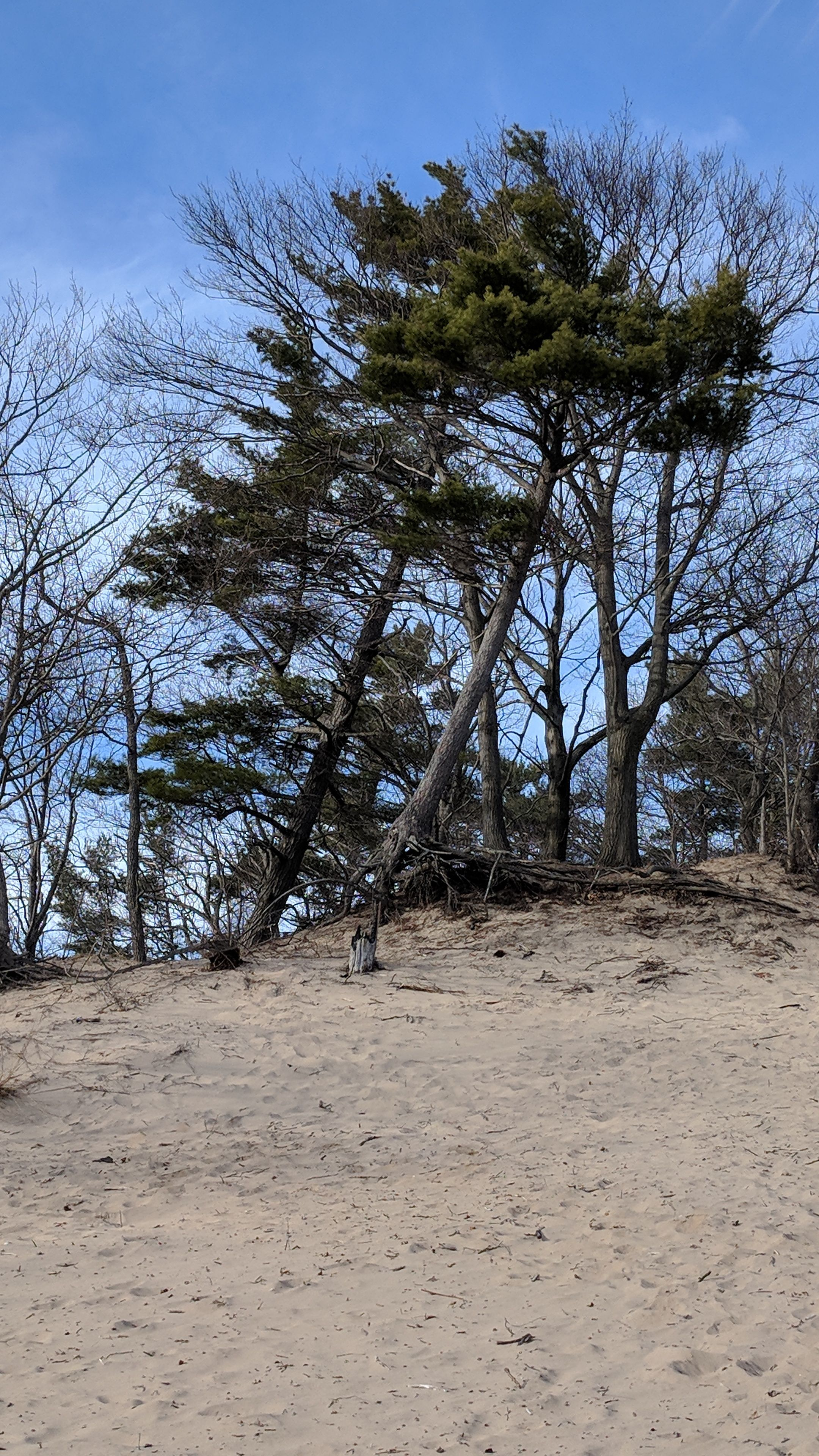 the dunes image by Kathi Millet   The dunes, Outdoor, Water on Dune Outdoor Living  id=17460
