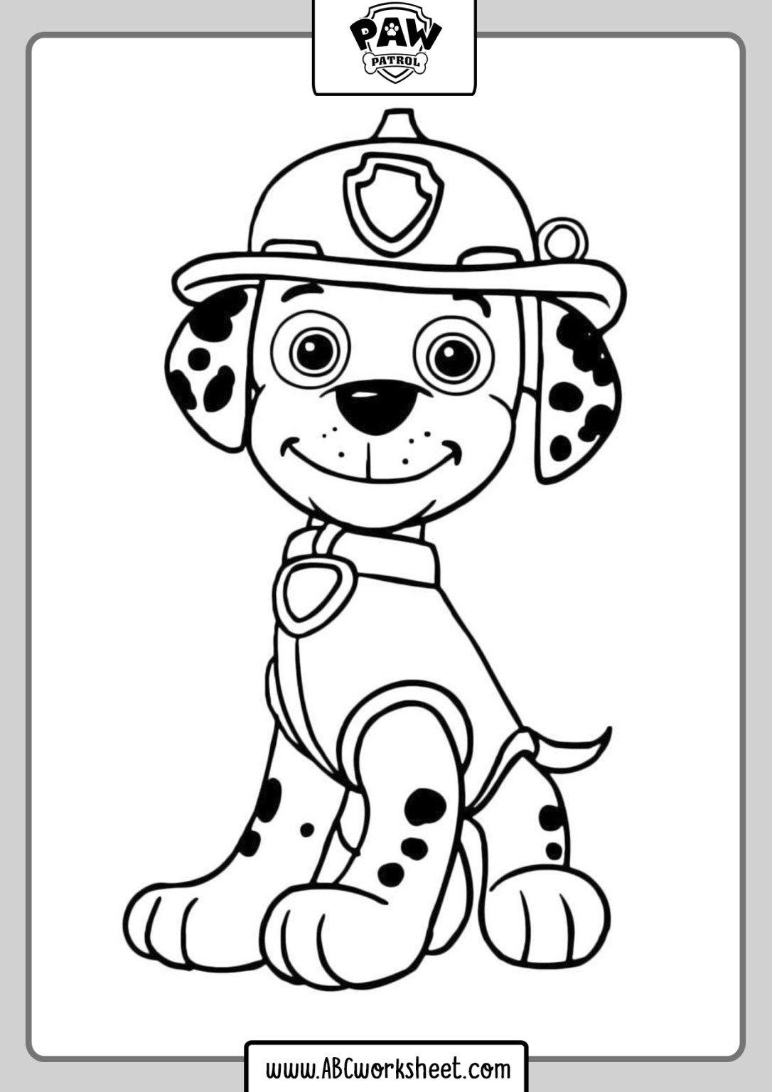 Paw Patrol Drawings Book
