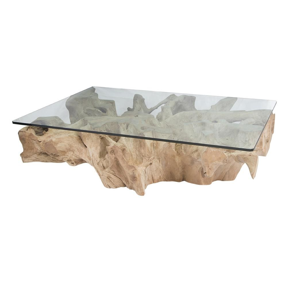 Teak Root Coffee Table | Bleached – Uniqwa Collections in ...