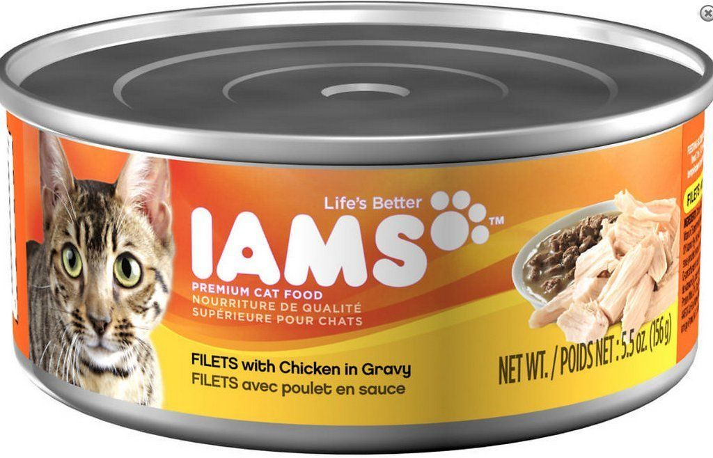 Iams proactive health adult filets with chicken in gravy