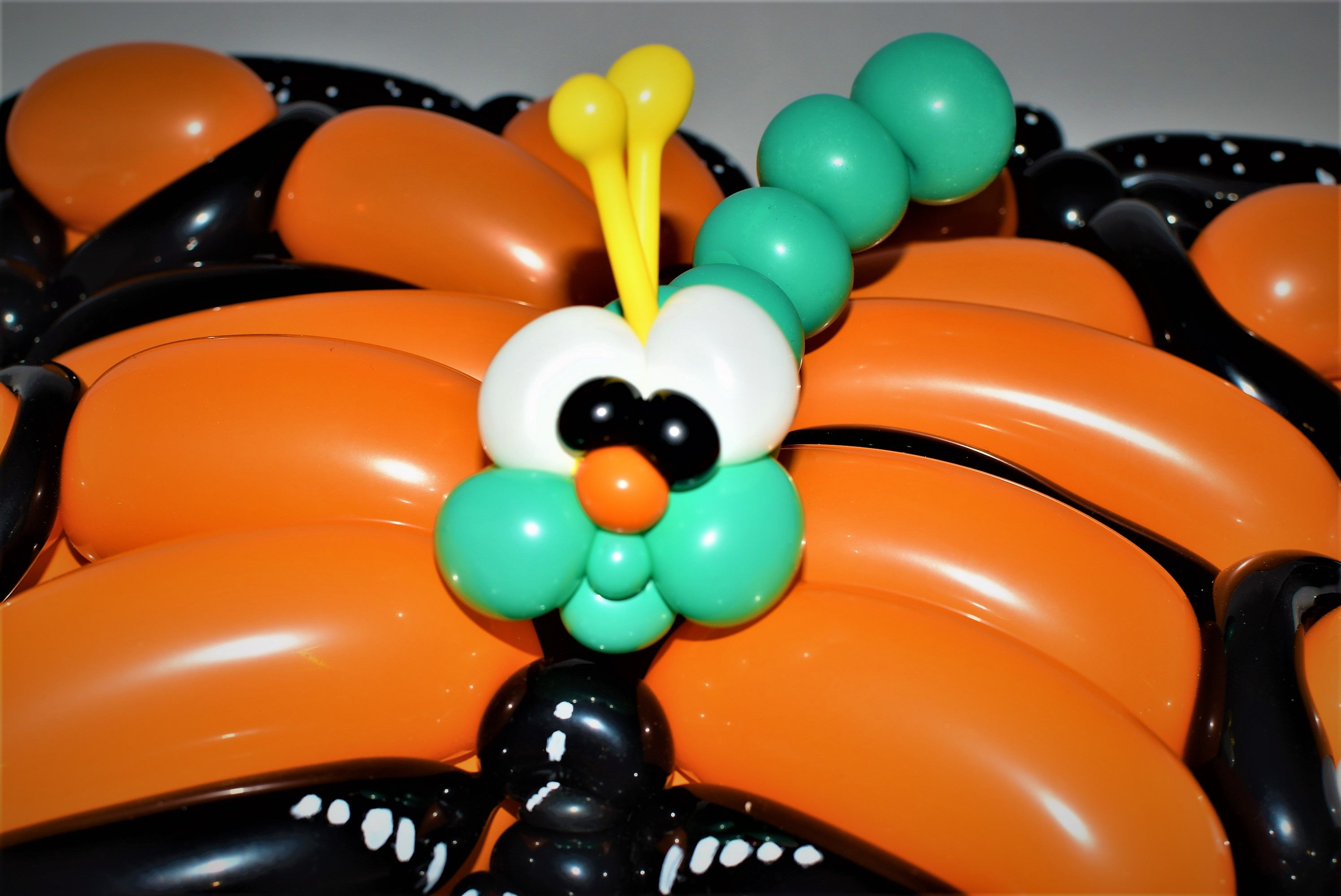 Caterpillar And Butterfly Balloon Sculptures By Las Vegas Artist Entertainer Jeremy Johnston Atomic Company Does Parties Events