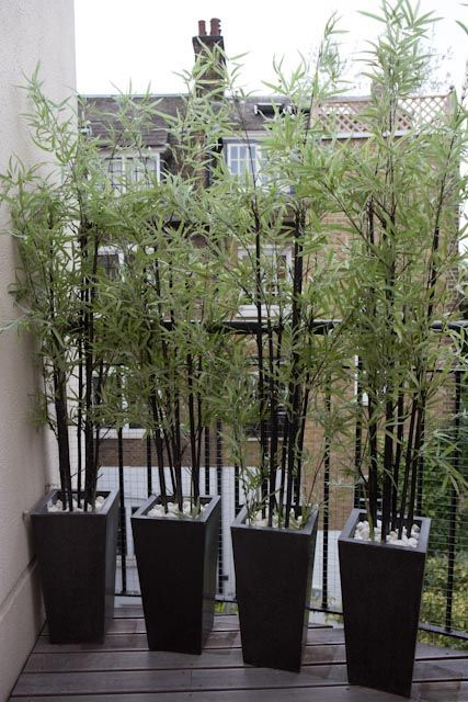 EXCELLENT apartment privacy screen LOVELY idea. :) #apartmentpatiogardens