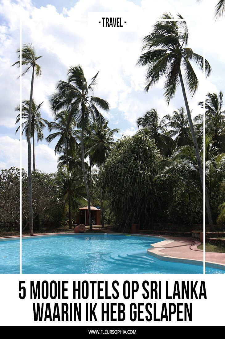 Beste hotels in Sri Lanka | Hotels, Reizen naar azië ...