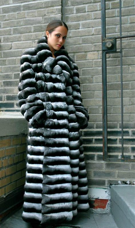 Pin On Fur Fashion Guide, How Much Is A Full Length Chinchilla Fur Coat
