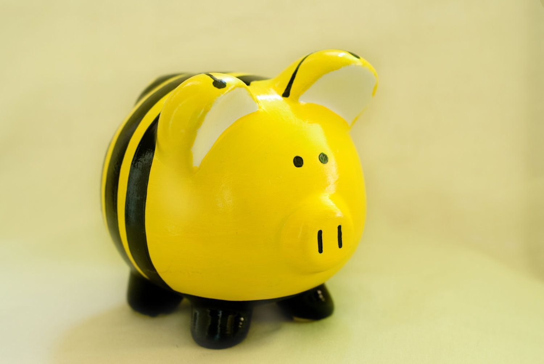 Bumble Bee Piggy Bank Pig Baby Shower