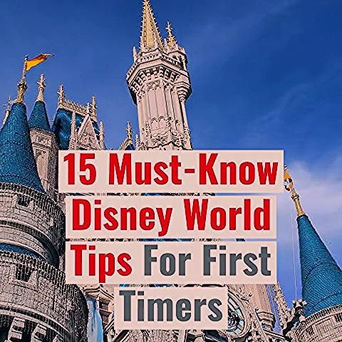 15 Must-Know Disney World Tips For First Time Visitors