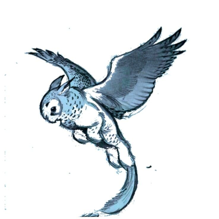 Owl Griffin Creature Drawings Animal Drawings Fantasy Creatures