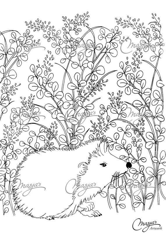 Masja S Hedgehog Coloring Page Summer Coloring Pages Coloring Pages Animal Coloring Pages