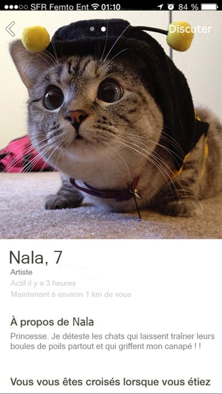 chat rencontres rencontrer trouver des amis datation féministe Reddit