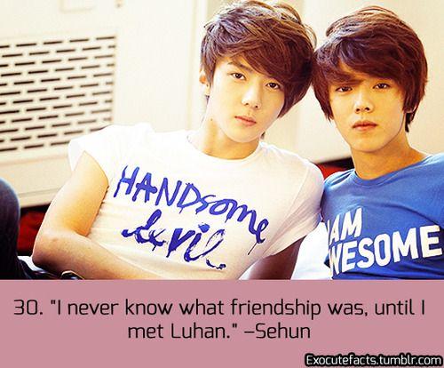 EXO FACT ♡ #KPOP - 30 hahahahha their shirts