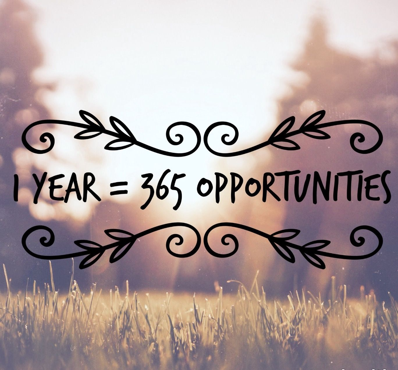 Opportunity Quotes Pinterest: 1 Year = 365 Opportunities