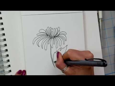 how i draw a chrysanthemum flower - slow drawing - YouTube