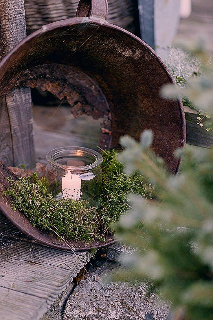 Photo of Weihnachtlicher Zauber im Novembergarten • Pomponetti