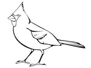 Bird Coloring Pages Bing Images Bird Coloring Pages Coloring Pages For Kids Coloring Pages
