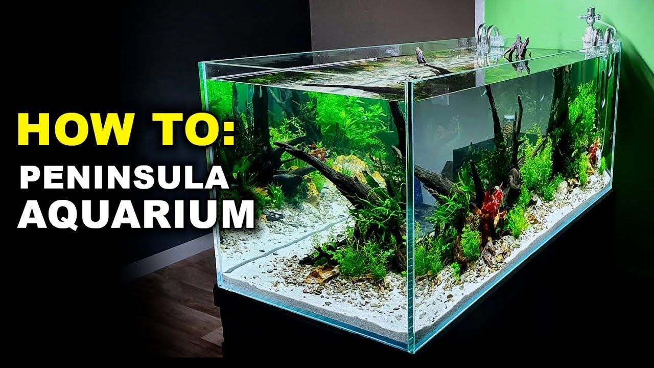 Aquariums Aquascape Tutorial 4ft Peninsula Aquarium Planted Asian Fish Tank How To Step By Step Guide Aquascape Fish Tank Fish Tank Design