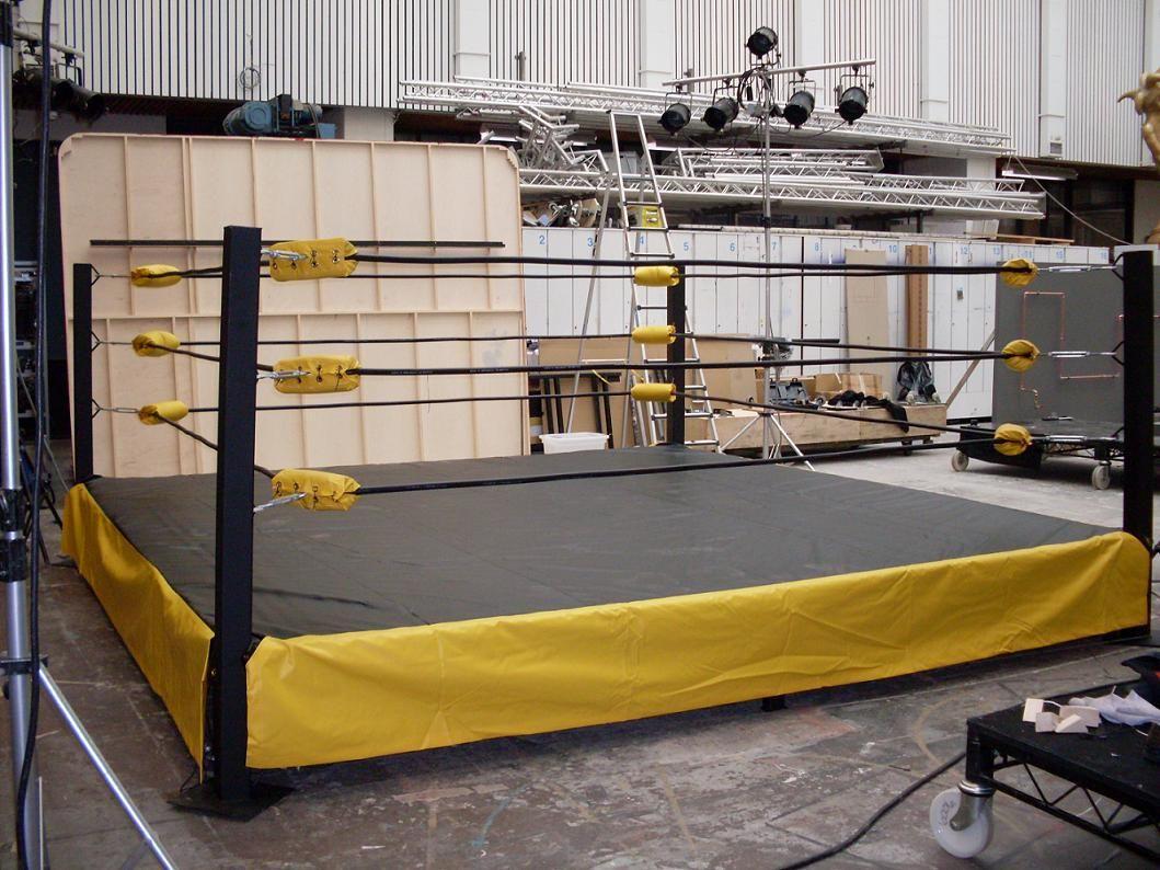 Backyard Wrestling Ring Also Need 2x12x16ft Boards 34 A Piece 408 2600 3008 Total Cost Backyard Backyard Playground Backyard Decor