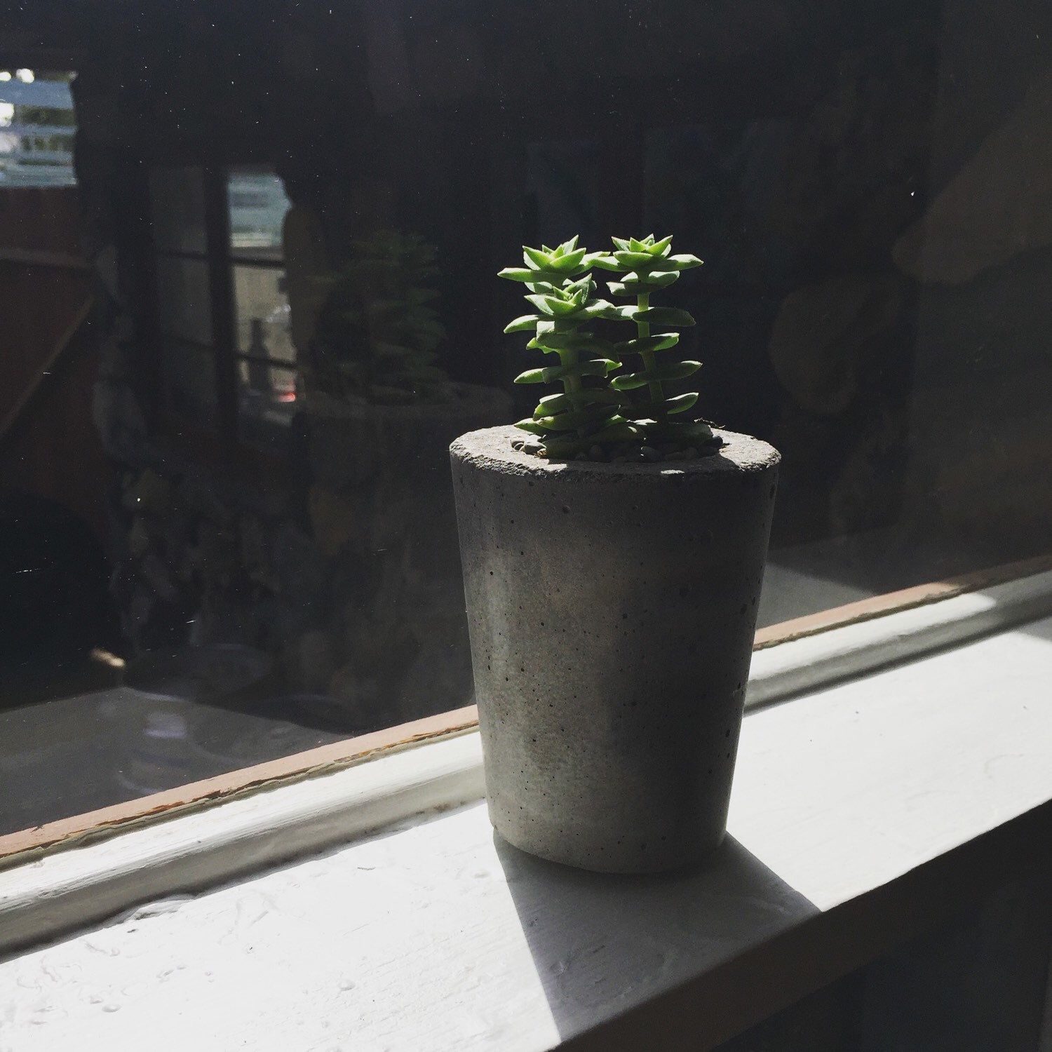Our planters are finding homes! Photo taken by a customer, get yours today!