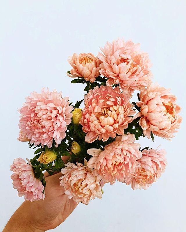 "Wedding Inspiration Amanda on Instagram ""All eyes are"