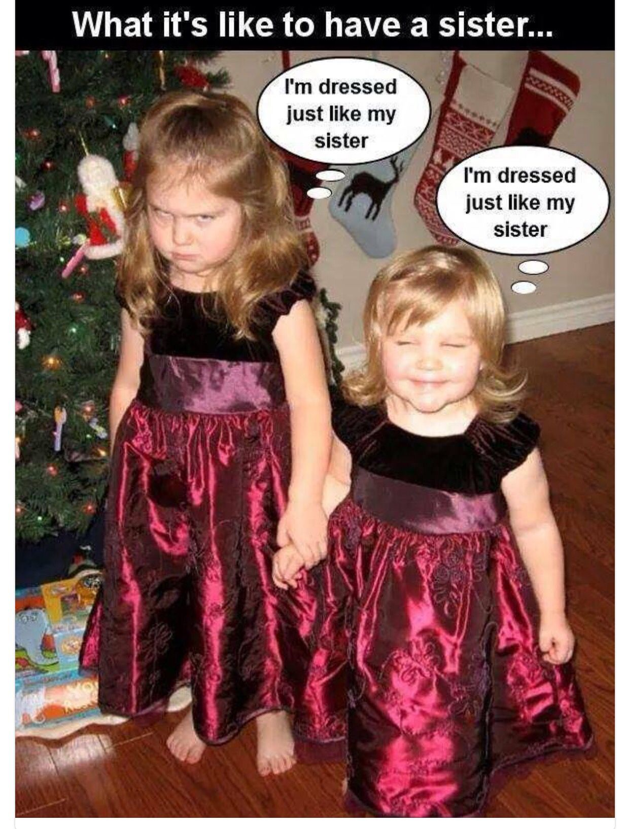 Pin By Susanna On Funny Quotes And Pictures What Is Like Funny Pictures Sisters