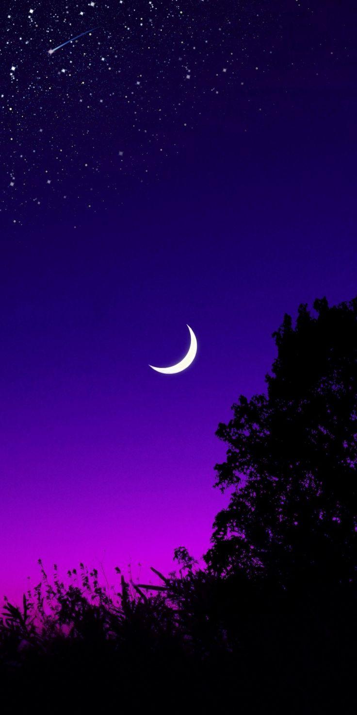 Moon Tree Starry Night Silhouette Minimal 10802160 Wallpaper Scenery Wallpaper Starry Night Wallpaper Infinity Wallpaper