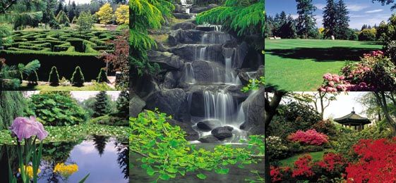 963ccef4a12eeb5d2e538e320a123377 - Places To Eat Near Van Dusen Gardens